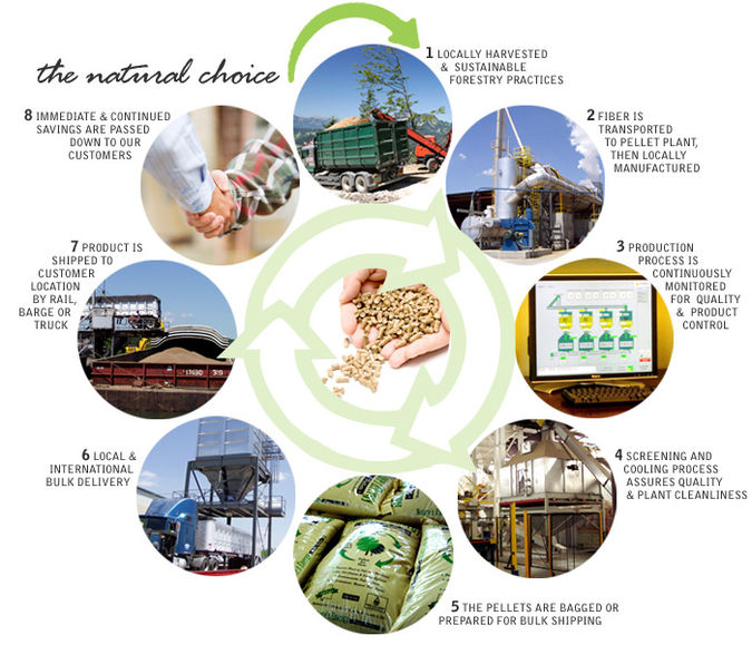 wood-pellet-plant-production
